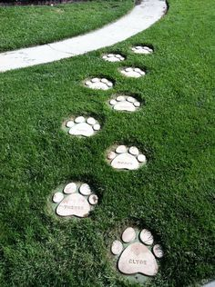 Dog Paws Stepping Stones: 6 Steps (with Pictures)Personalize your garden with DIY garden stepping stones you make yourself! Use concrete and simple forms to make amazing DIY stepping stones! Diy Garden Decor, Garden Art, Dog Garden, Garden Design, Garden Stepping Stones, Concrete Stepping Stones, Decorative Stepping Stones, Garden Steps, Dog Rooms