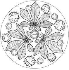 Fab autumn fall Mandala: free printable.  Perfect for colouring in