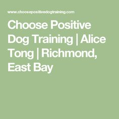Choose Positive Dog Training | Alice Tong | Richmond, East Bay