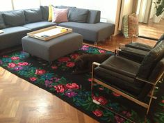 rose kilim in modern interior.