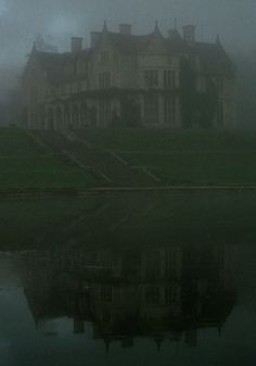 """Oh, my, it seems like a heavy fog has settled..."""