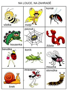 Pro Šíšu: Na louce a na zahrade...pexeso Teaching Posts, Bugs And Insects, Senior Year, Holidays And Events, Bowser, Crafts For Kids, Preschool, Language, Clip Art