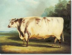 William Henry Davis - Farm Animals - A Prize Cow 1838 Painting