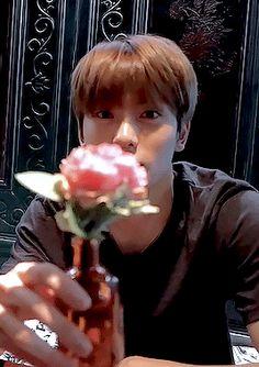"""Jaehyun itu kalau kata Andra and the Backbone """"Kau begitu sempurna"""" … Jaehyun Nct, Taeyong, Winwin, Seoul, Rapper, Jung Yoon, Valentines For Boys, Jung Jaehyun, Wattpad"""