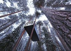 Treehotel, Sweden #travel #hotel