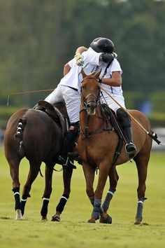 Polo - Celebration
