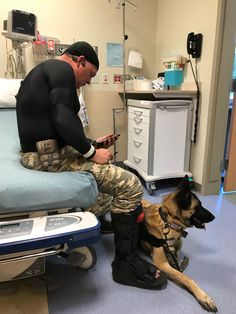 1984 Best God Bless Our Canine Heroes Images On Pinterest