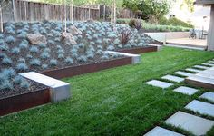 A combination of concrete and metal in this shot works as a defined edge for the lawn, as a retaining wall for a raised planting bed, and as a design statement in the landscape.
