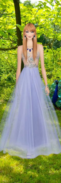 Peacock Glade