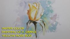 How to paint   yellow rose bud in water colors