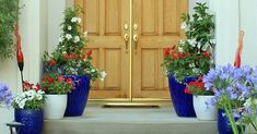 Show of your Red, White, and Blue spirit this Summer by creating a DIY Patriotic Entryway. Plant containers with flowers that show off your American Pride. Front Door Entrance, Entrance Decor, Grand Entrance, Entryway Decor, Container Plants, Container Gardening, Land Of The Free, Southern Homes, Summer Diy