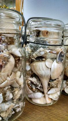 Items similar to SALE * Vintage Ball & Atlas Canning Jars Full of Vintage Shells * Wedding Centerpieces * Nautical Decor * Repurposed + Upcycled Decor on Etsy Seashell Crafts, Beach Crafts, Kids Crafts, Mason Jar Crafts, Mason Jars, Glass Jars, Shell Display, Jar Art, Ball Jars