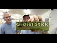 Dirty Jobs 615 Cricket Farmer -full - YouTube