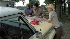 The Walking Dead - Capitulo 05 - Temporada 2 - Audio Latino