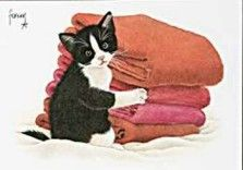 Postkaarten    Jeroentje bij de was    Francien Westering, van    C9272    Postkaarten, Tekeningen, Dieren, Katten,