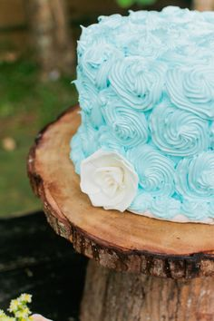 Simple Blue Wedding Cake With Rose Piped Frosting
