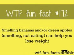 MORE OF WTF-FUN-FACTS ARE COMING HERE funny , weird real facts!