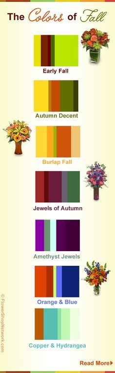 Possibly the most beautiful season of all, the colors of fall are something we look forward to all year. This infograph shows the color trends for fall 2012.
