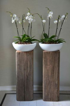 know about the trend for bathroom plants, bathroom remodel ? This 'quick . -you know about the trend for bathroom plants, bathroom remodel ? This 'quick . Bathroom Plants, Bathroom Sinks, Bathroom Green, Modern Bathroom, Custom Bathrooms, Gold Bathroom, Minimalist Bathroom, Small Bathroom, Garden Design