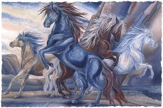 Bergsma Gallery Press::Paintings::Natural Elements::Horses::Wild Winds...The Power Of The Four Directions - Prints