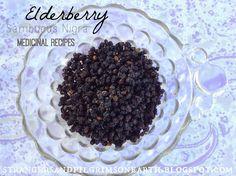 Strangers & Pilgrims on Earth: How to Make Elderberry Medicine ~ Home Apothecary Series