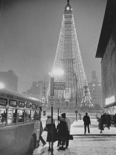 """It's so amazing to see the """"tree"""" from 1960.... Man Indy, you have certainly changed!"""