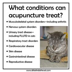 Acupuncture is a great tool to treat a variety of different conditions.