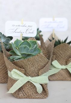wedding favours, idee green per matrimoni
