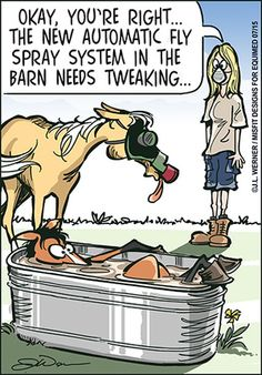Our new comic is here. Please enjoy and share! Funny Horse Memes, Funny Horses, Funny Gags, Cute Horses, Funny Animal Memes, Funny Animals, Horse Humor, Cute Horse Pictures, Equestrian Memes