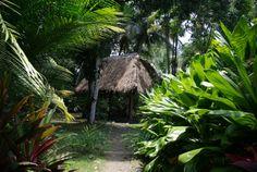 choza hd 8 @ www.mytropicalhut.com