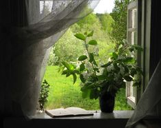 through the window...