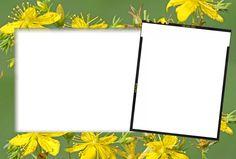 SYEDIMRAN: albums frames _engagement frames_love frames_marriags frames_weddings frames_ birthday frames_flower