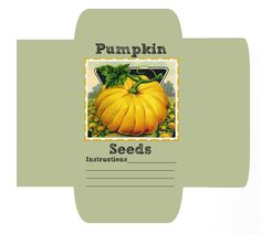 Seed Packets Free Printable
