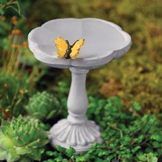 BUTTERFLY BIRD BATH - This beautiful butterfly always graces your garden on this simplistic bird bath. A must to add to your magical fairy garden today.   #fairygardeningaustralia