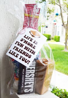 "S'mores Goodie Bag with Free Printables! ""Life is S'Mores Fun with Friends Like You"" design for boyfriend Food Gifts, Craft Gifts, Diy Gifts, Secret Sister Gifts, Cheer Sister Gifts, Just In Case, Just For You, Neighbor Gifts, Appreciation Gifts"