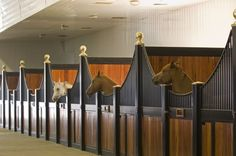 Wonderful classical stalls. These horses have it made, don't they?