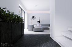 Minimalistic home by KUOO architects