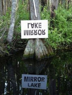 ✿ڿڰۣ(̆̃̃•Aussiegirl Mirror Lake