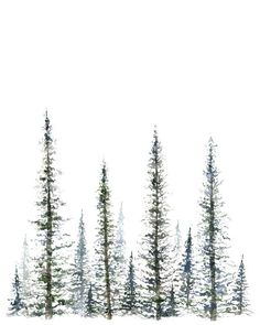 David Pulju - Pine Tree Print tree art tree painting greenery