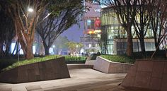 Zelkova Public Realm — Landworks Studio, Inc. Modern Landscape Design, Landscape Edging, Modern Landscaping, Contemporary Landscape, Classical Architecture, Sustainable Architecture, Landscape Architecture, Urban Heat Island, Rooftop Design