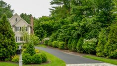 landscape shrub screens | Landscape Design Ideas, Pictures, Remodels and Decor