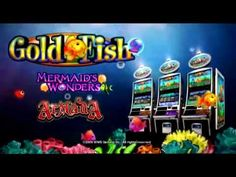 download blackjack online canada  players