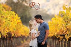fall vineyard engagement. Can anyone guess by my pins what season I will be married in?? :)