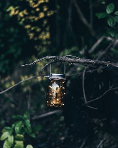 Beautiful candlelight via Candle Lamp, Candles, Beltane, Aesthetic Grunge, Hygge, Breeze, Lights, Bird, Outdoor Decor