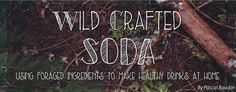wildcrafted soda article