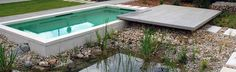 water garden next to pool is actually connected and uses plants to clean and purify the pool water instead of chemicals or salt