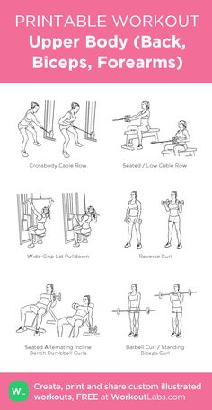 Upper Body (Back, Biceps, Forearms): my visual workout created at WorkoutLabs.com • Click through to customize and download as a FREE PDF! #customworkout