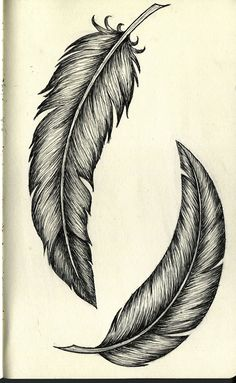 Feather Sketch, Feather Drawing, Feather Tattoo Design, Feather Painting, Feather Art, Feather Tattoos, Body Art Tattoos, Sleeve Tattoos, Tatoos