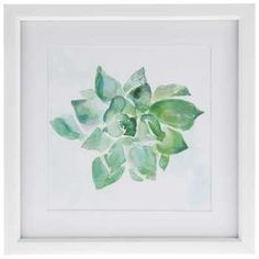 Watercolor Succulent Framed Art I like the idea of water colors maybe just not this one.