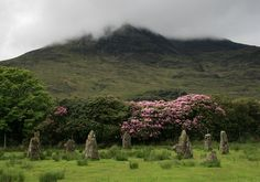 Loch Buie Stone Circle: Craignure, Isle of Mull